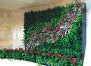 Озеленение,  фитодизайн,  фито-модули
