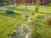 Озеленение, продажа саженцев, ландшафтный дизайн