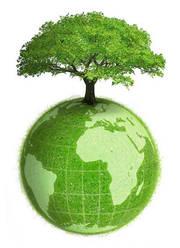 Пишу рефераты по гуманитарным предметам (экология,  экономика (теория),